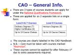 cao general info1