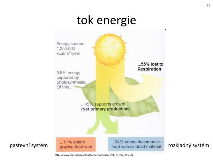 tok energie