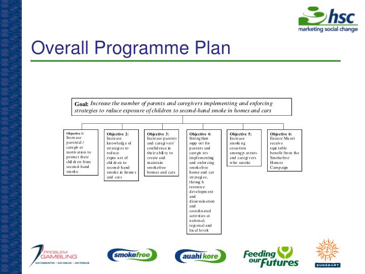 Overall Programme Plan