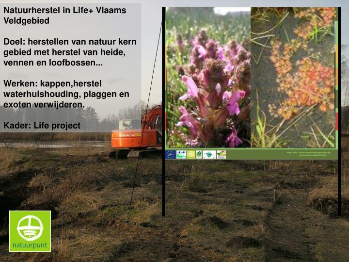 Natuurherstel in Life+ Vlaams Veldgebied