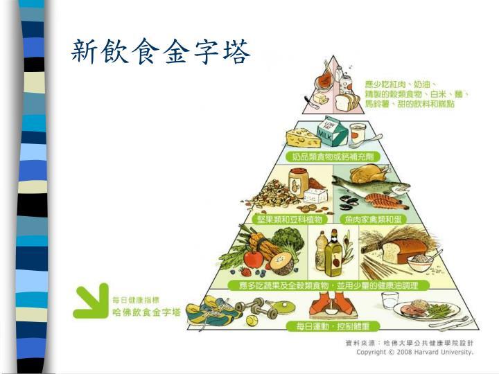 新飲食金字塔