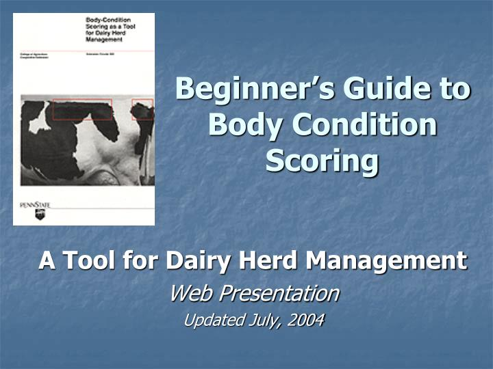 Beginner s guide to body condition scoring