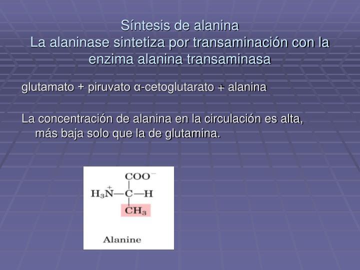 Síntesis de alanina
