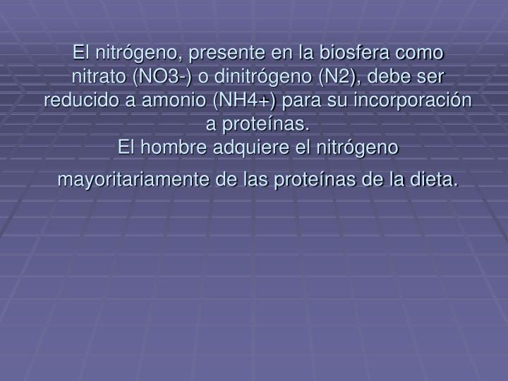 El nitrógeno, presente en la biosfera como nitrato (NO3-) o dinitrógeno (N2), debe ser reducido a amonio (NH4+) para su incorporación a proteínas.
