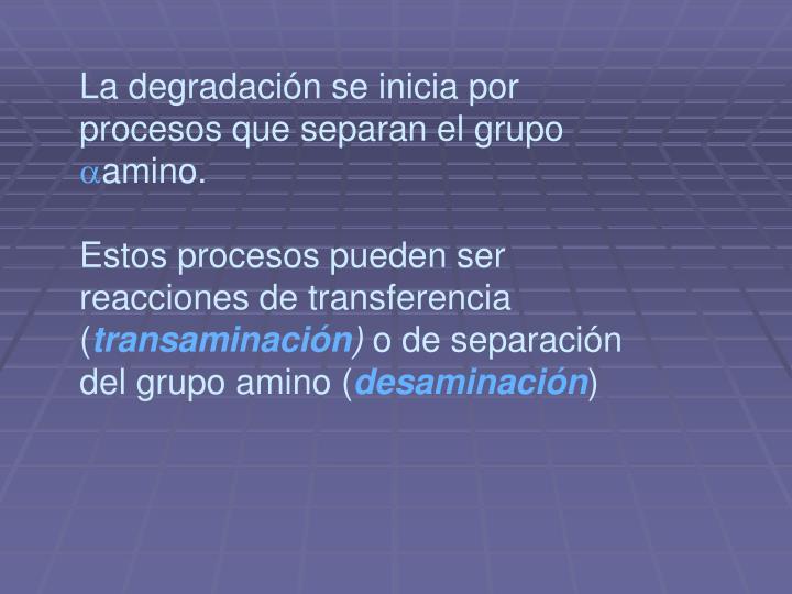 La degradación se inicia por procesos que separan el grupo