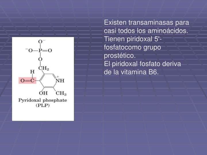 Existen transaminasas para casi todos los aminoácidos.