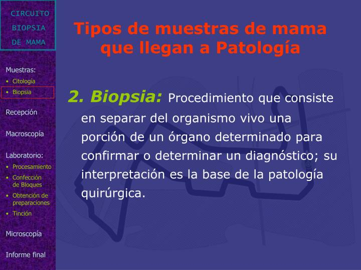 2. Biopsia: