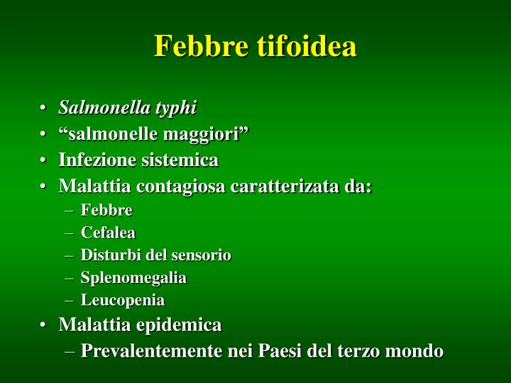Febbre tifoidea