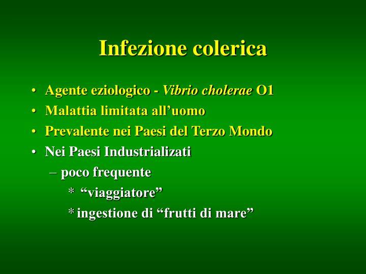 Infezione colerica