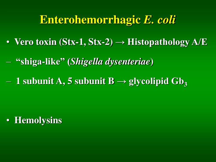 Enterohemorrhagic