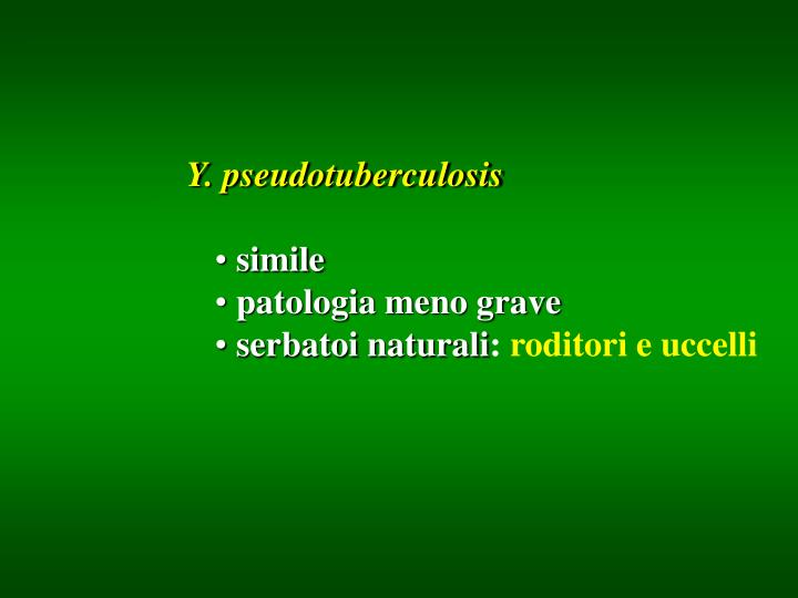 Y. pseudotuberculosis