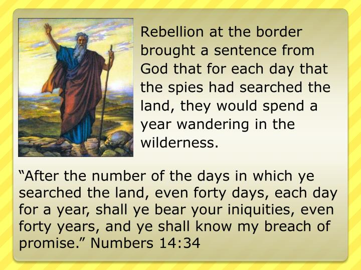 Rebellion at the border brought a sentence from God that for each day that the spies had searched the land, they would spend a year wandering in the wilderness.