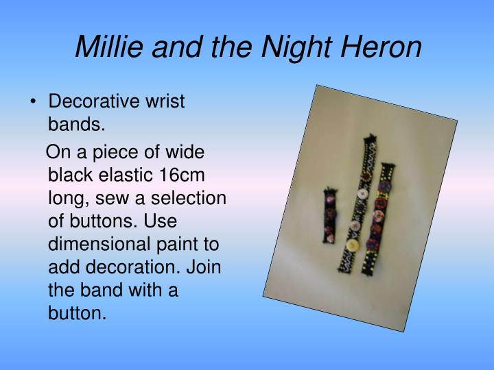 Millie and the Night Heron