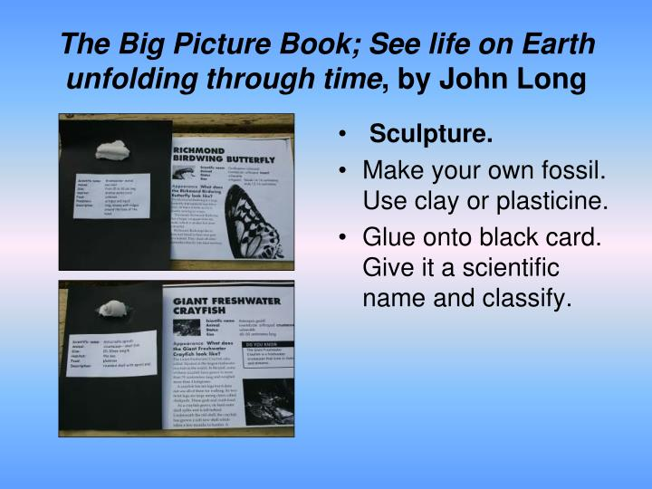The Big Picture Book; See life on Earth unfolding through time