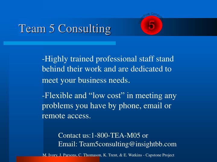 Team 5 Consulting