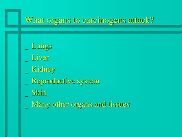 What organs to carcinogens attack?