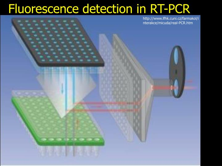 Fluorescence detection in RT-PCR