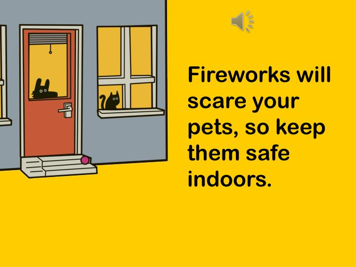 Fireworks will scare your pets, so keep them safe indoors.