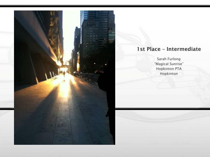 1st Place – Intermediate
