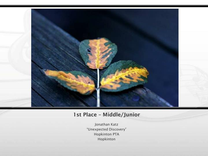 1st Place – Middle/Junior