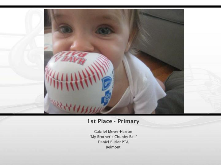1st Place - Primary