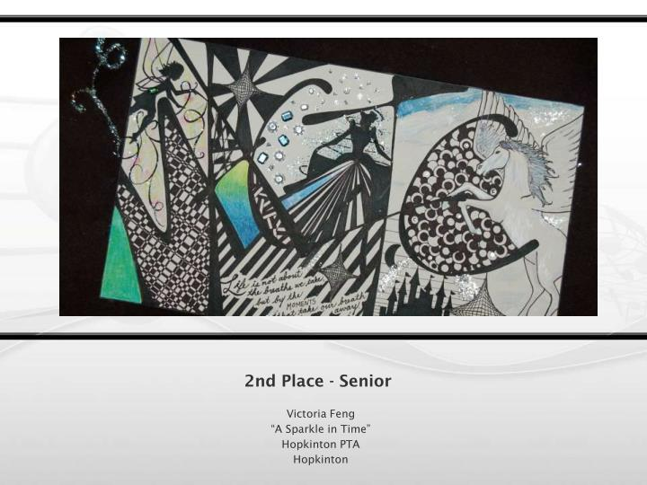 2nd Place - Senior