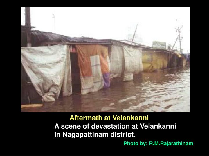 Aftermath at Velankanni