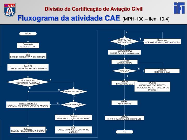 Fluxograma da atividade CAE
