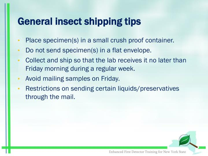 General insect shipping tips