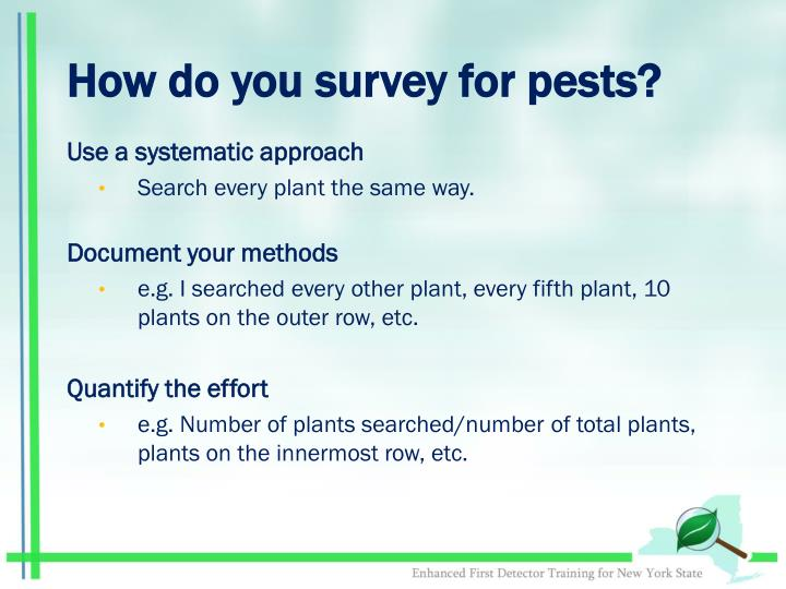 How do you survey for pests?