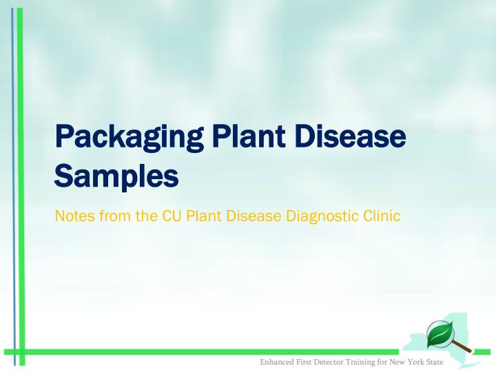 Packaging Plant Disease Samples