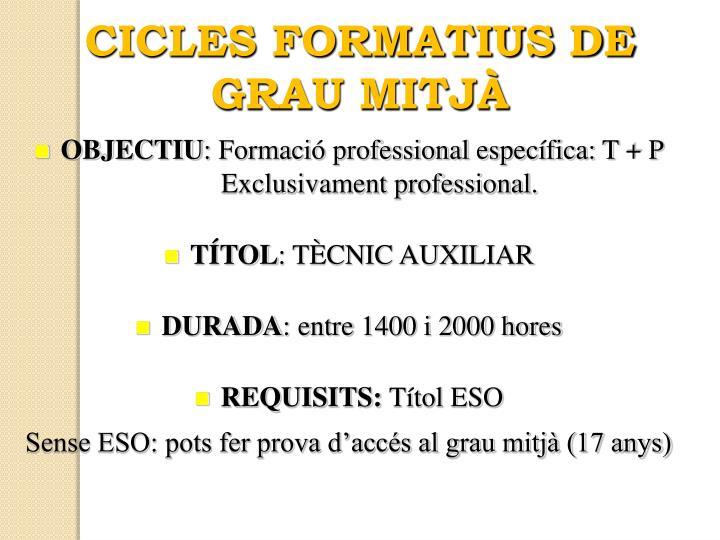 CICLES FORMATIUS DE GRAU MITJÀ