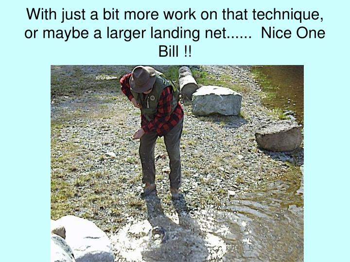 With just a bit more work on that technique, or maybe a larger landing net......  Nice One Bill !!