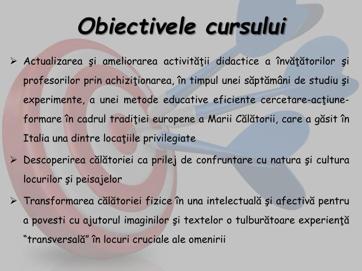 Obiectivele cursului