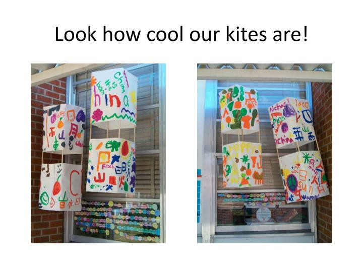 Look how cool our kites are!