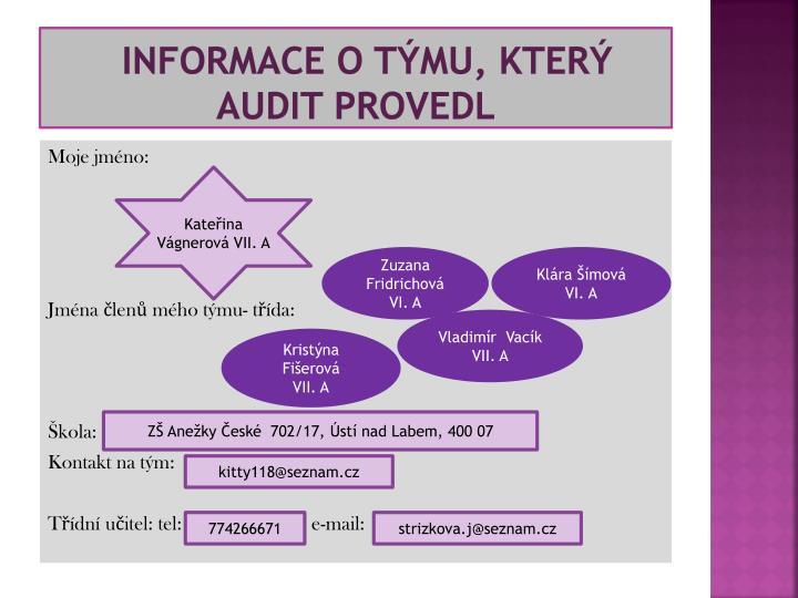 informace o týmu, který audit provedl