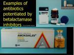 examples of antibiotics potentiated by betalactamase inhibitors