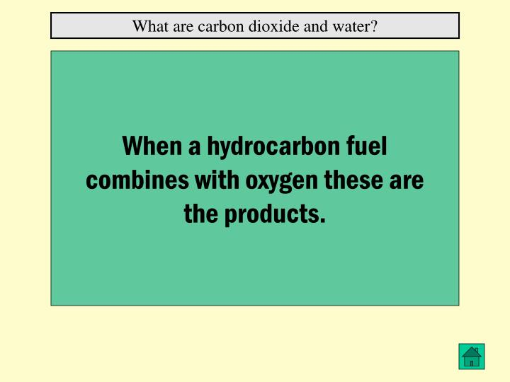 What are carbon dioxide and water?