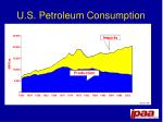 u s petroleum consumption