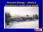 vermont energy where a woodchuck could chop wood
