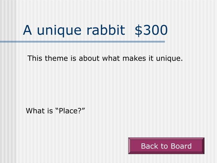 A unique rabbit  $300