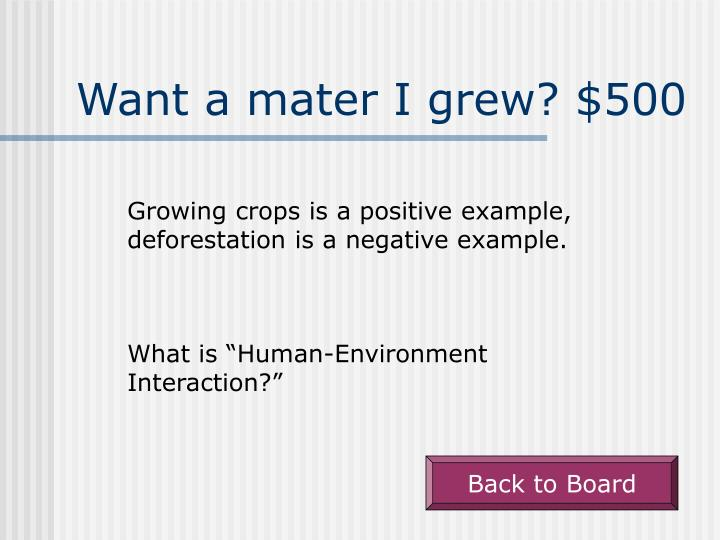 Want a mater I grew? $500