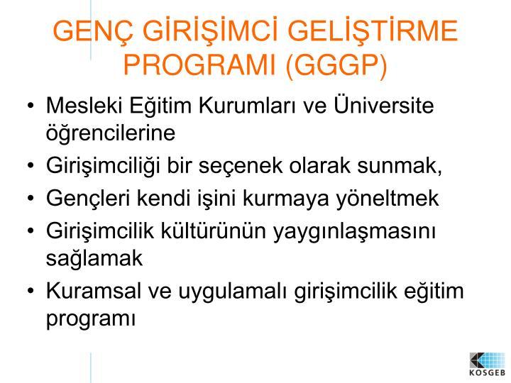 GENÇ GİRİŞİMCİ GELİŞTİRME PROGRAMI (GGGP)