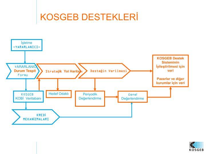 KOSGEB Destek Sisteminin İyileştirilmesi için veri