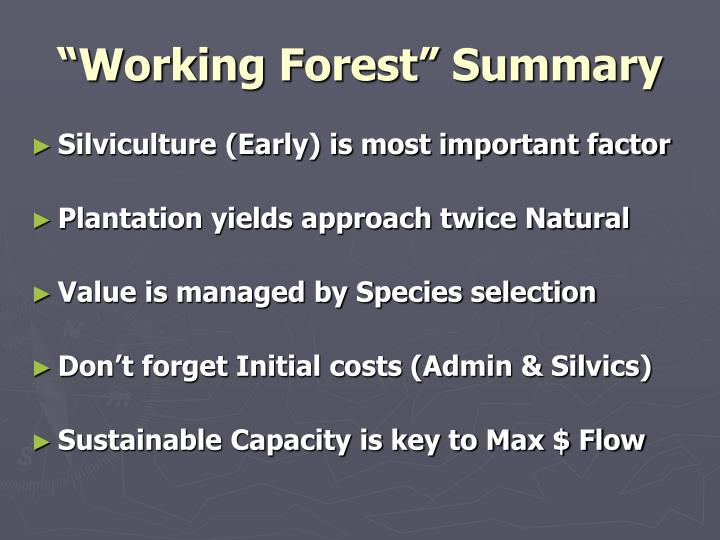 """""""Working Forest"""" Summary"""