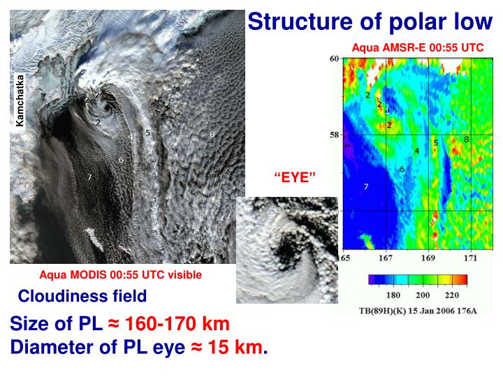 Structure of polar low