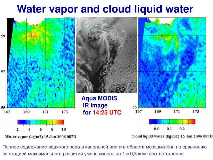 Water vapor and cloud liquid water