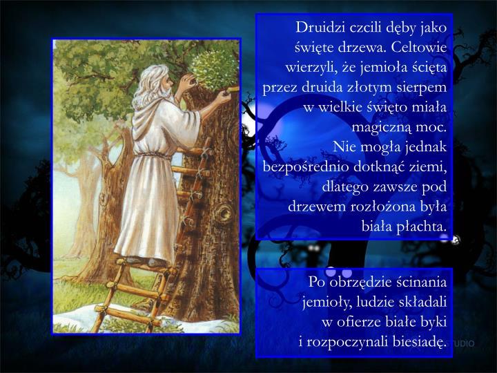 Druidzi czcili dęby jako święte drzewa. Celtowie wierzyli, że jemioła ścięta przez druida złotym sierpem w wielkie święto miała magiczną moc.