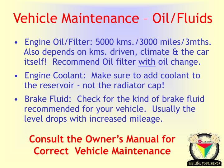 Vehicle Maintenance – Oil/Fluids