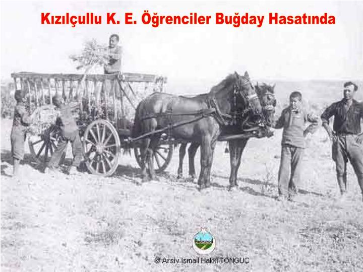 Kızılçullu K. E. Öğrenciler Buğday Hasatında